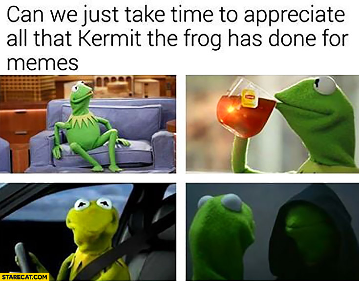 Can we just take time to appreciate all that Kermit the frog has done for memes?