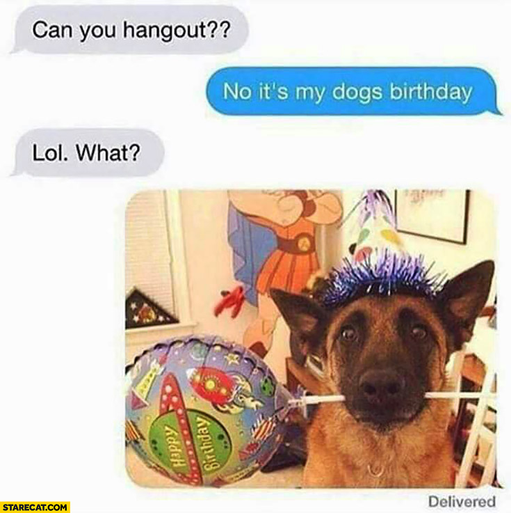 Can you hangout? No, it's my dogs birthday. Lol what? Dog celebrating picture