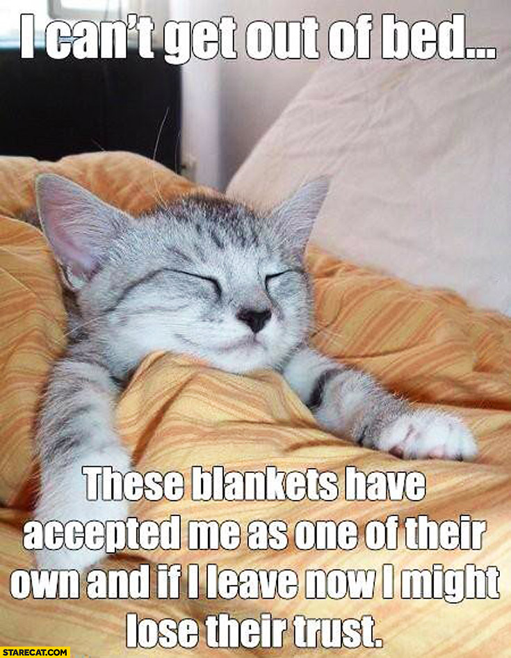 Can't get out of bed these blankets have accepted me as on of their own
