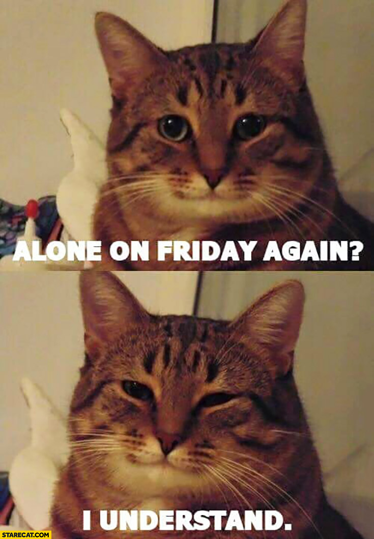 Cat alone on friday again I understand