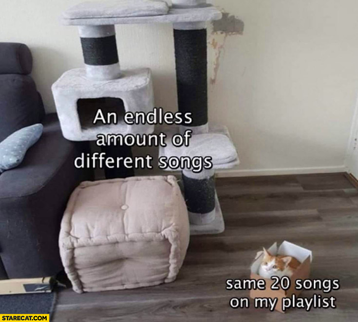 Cat an endless amount of different songs vs same 20 songs on my playlist box