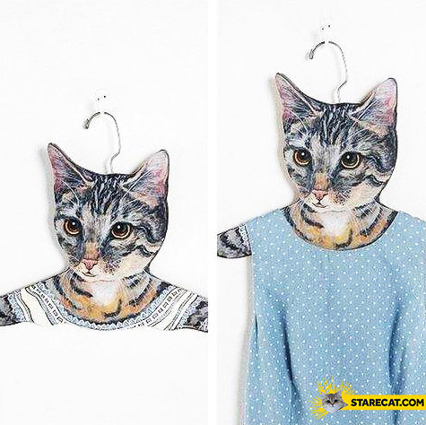 Cat clothing hangers