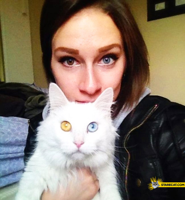 Cat girl heterochromia
