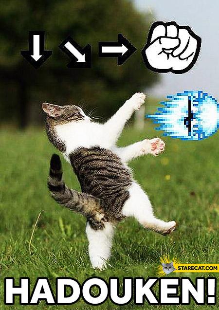Cat Hadouken!