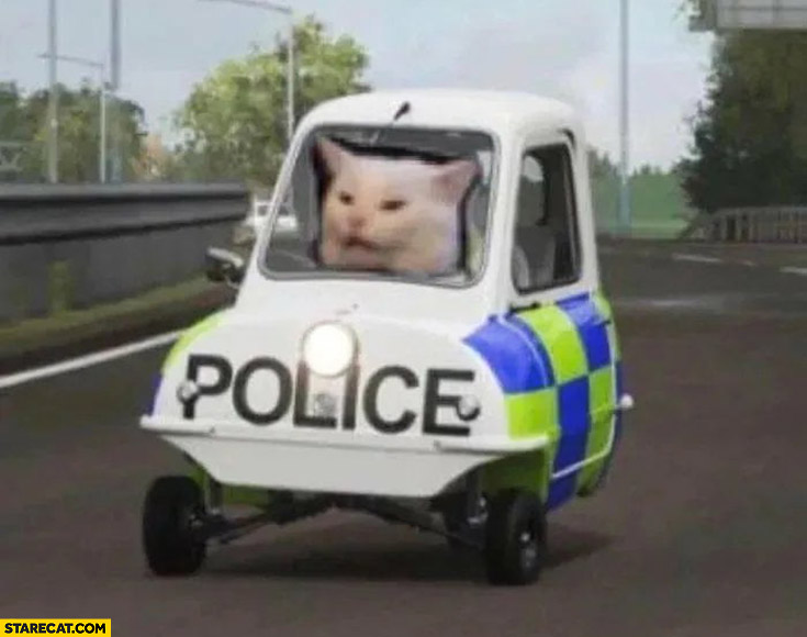 Cat in a police car photoshopped meme