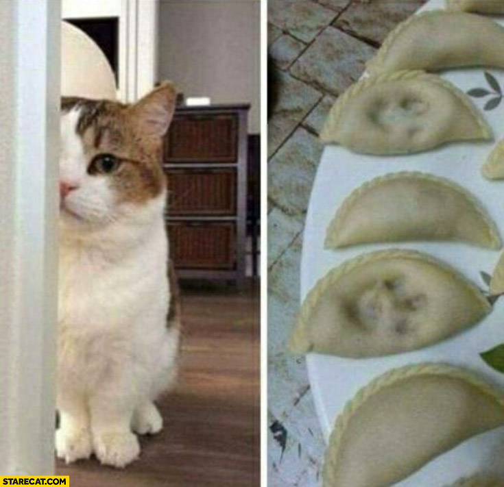 Cat paws marks on dumplings
