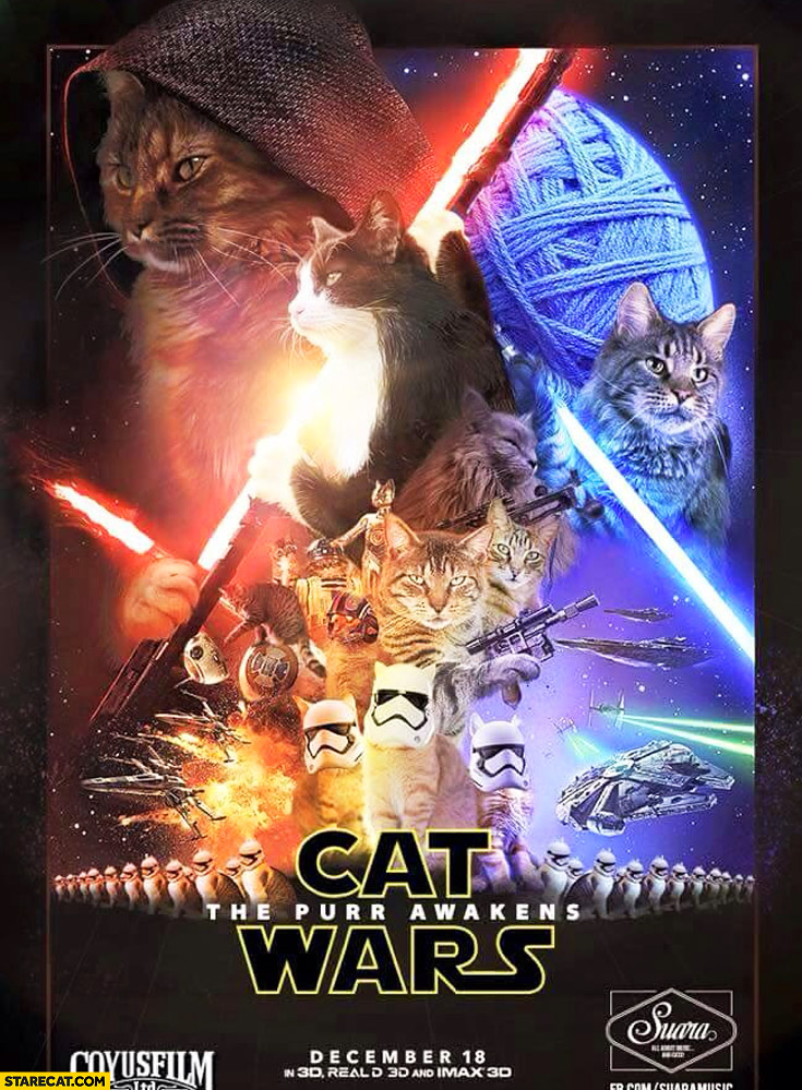 Cat Wars the purr awakens