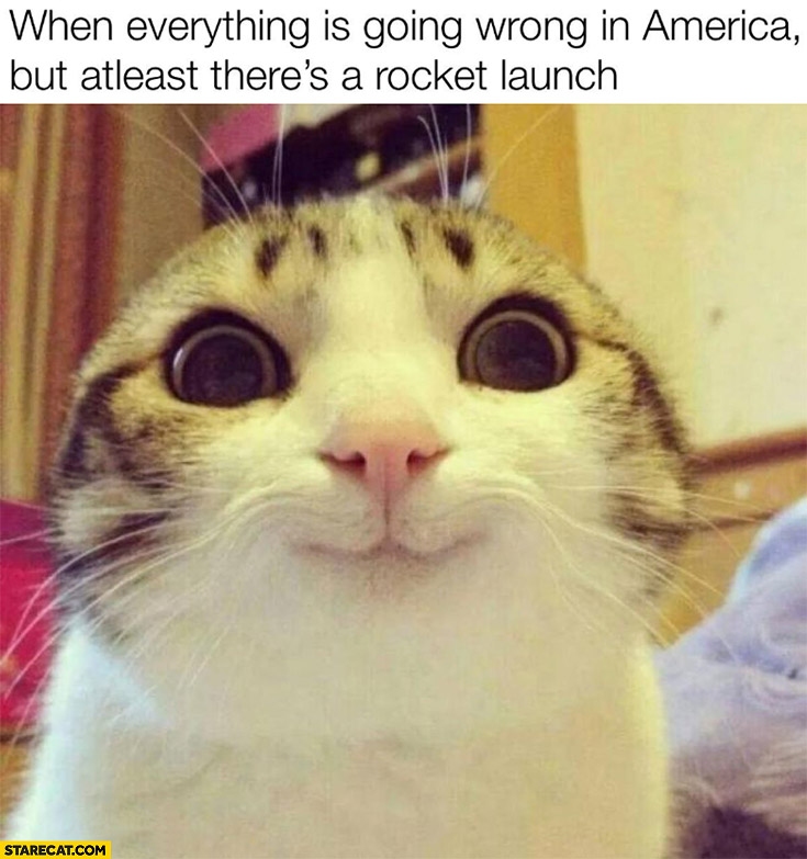 Cat when everything is going wrong in America but atleast there's a rocket launch