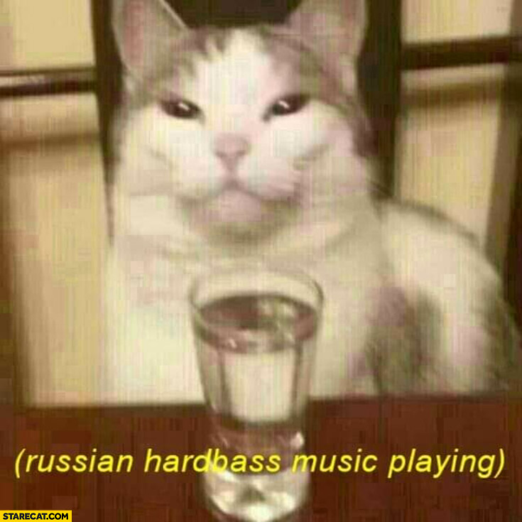 Cat with vodka Russian hardbass music playing