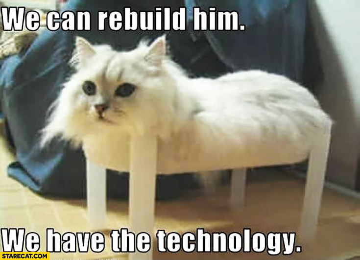 Cat without legs, we can rebuild him we have the technology