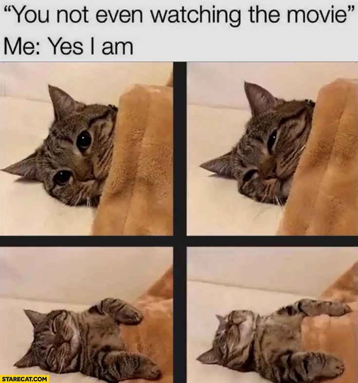 Cat you're not even watching the movie, me: yes I am then felt asleep