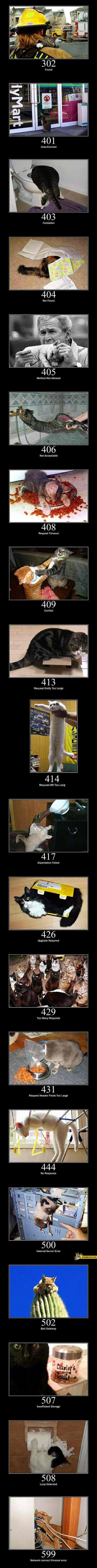 Cats as http errors