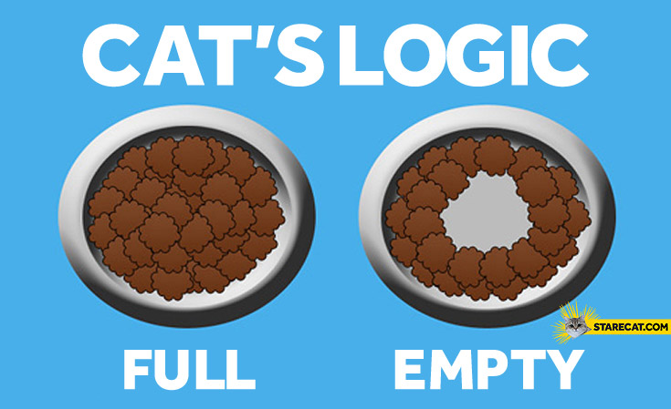 Cat's logic full empty food bowl