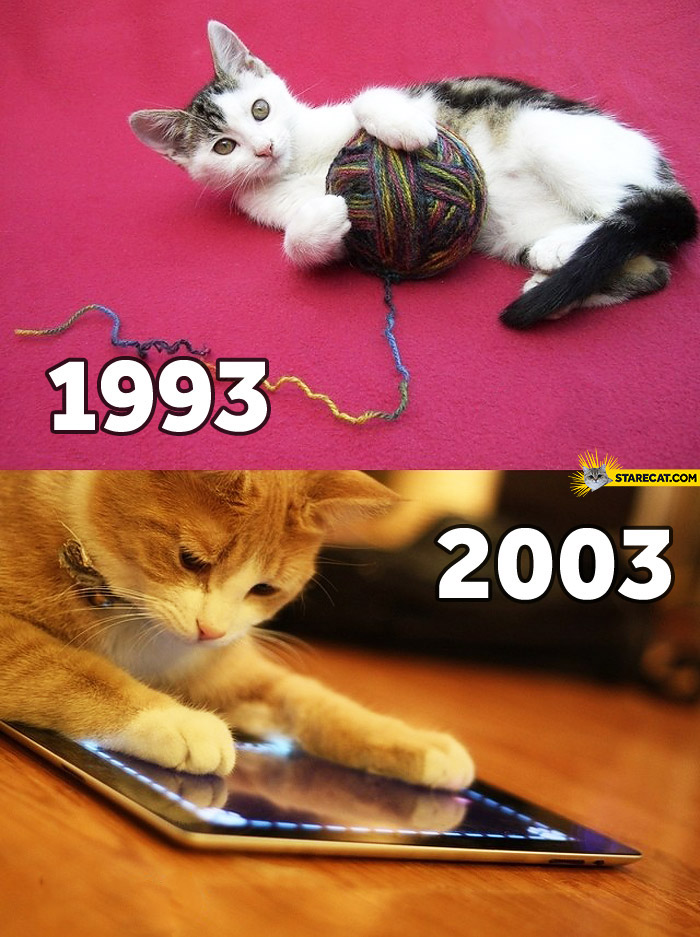 Cats now vs then