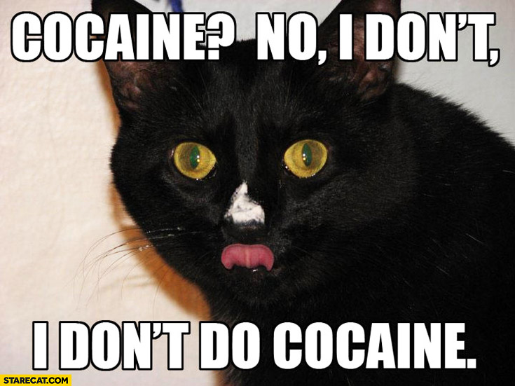 Drugs For Cats And Dogs