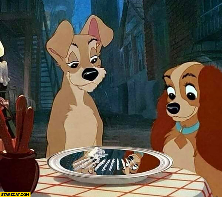 Coke plate cocaine lady and the tramp