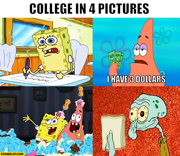 college in 4 pictures spongebob starecat