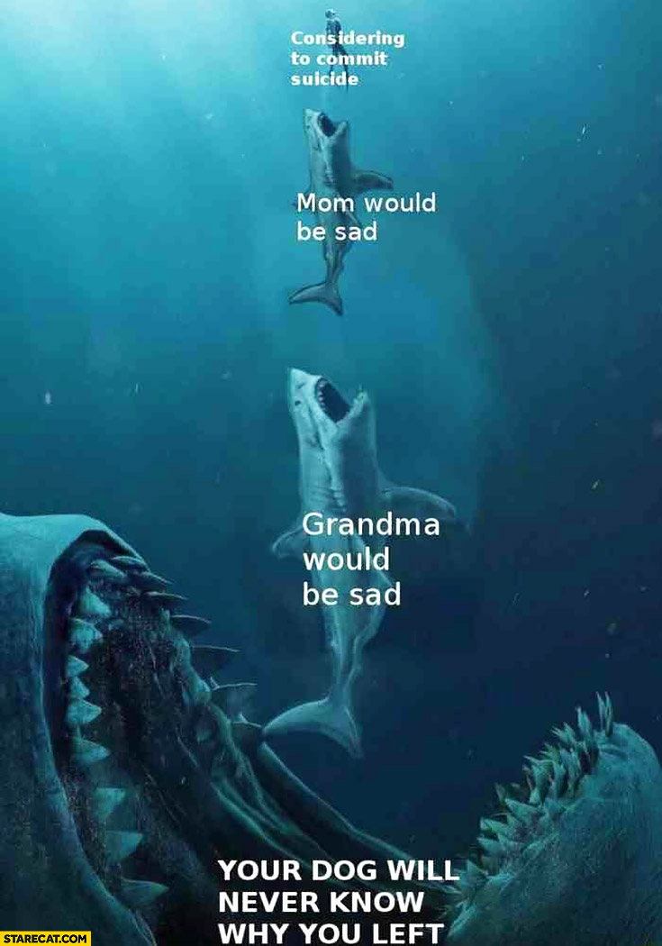 Considering to commit suicide mom grandma would be sad your dog will never know why you left sharks meme