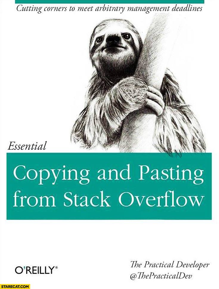 Copying and pasting from Stack Overflow essential book oreilly