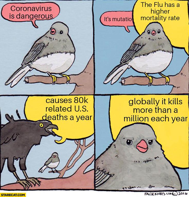 Coronavirus birds comic flu is more dangerous than corona virus