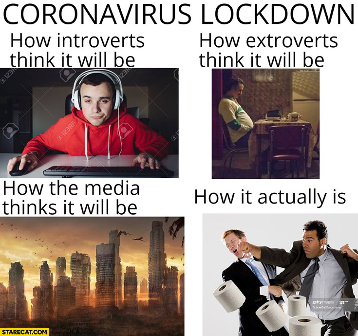 Coronavirus lockdown: how introverts, extroverts, media think it will be vs how it actually is fighting for toilet paper
