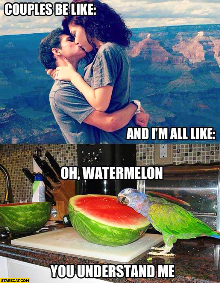 Couples be like kissing and I'm all like oh watermelon you understand me