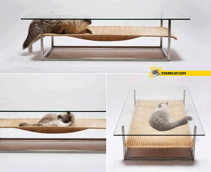 Creative glass table with bed for cat