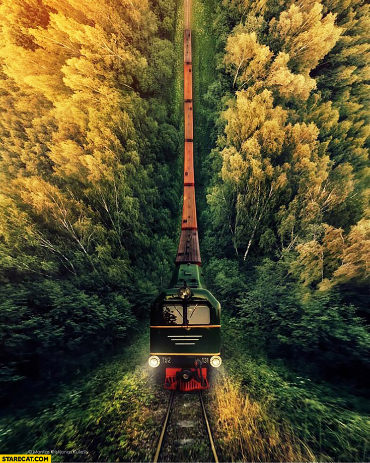 Creative train in a forrest photo shot by a drone