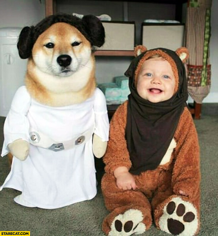 Cute dog doge dressed as Leia, kid dressed as Ewok Star Wars cosplay