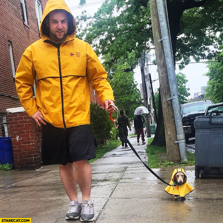 Cute puppy yellow raincoat