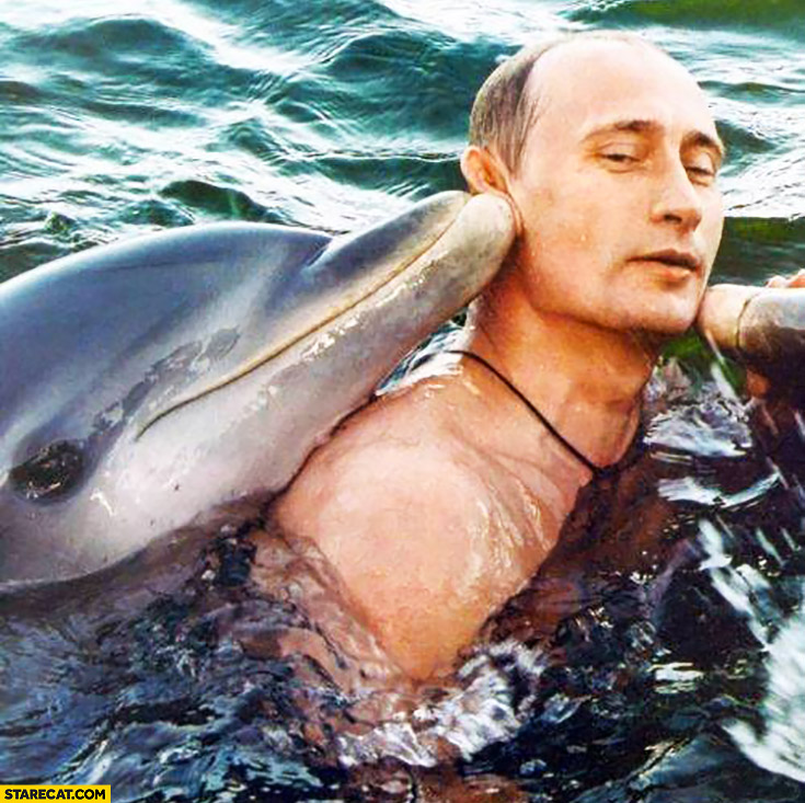 Cute Vladimir Putin with dolphins