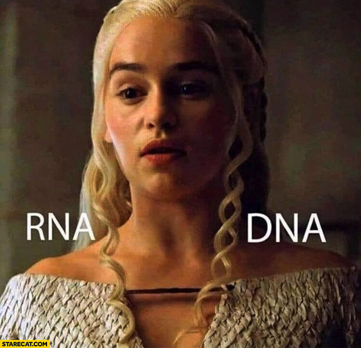 Daenerys curly hair RNA DNA comparison