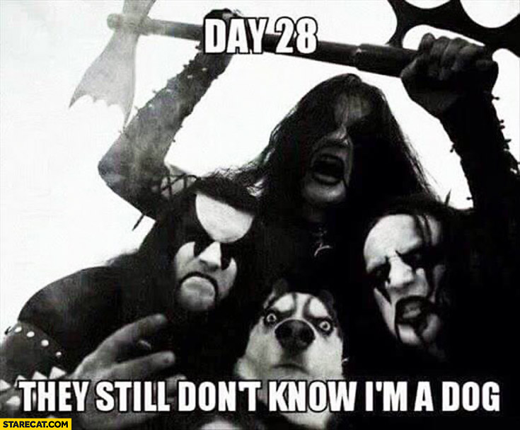 Day 28 they still don't know I'm a dog death metal band