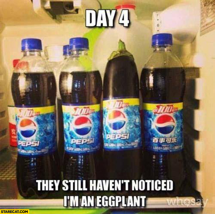 Day 4 they still haven't noticed I'm an eggplant Pepsi bottles