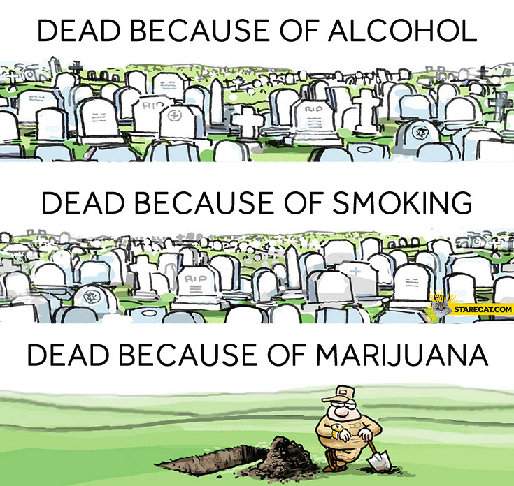 Dead because of marijuana