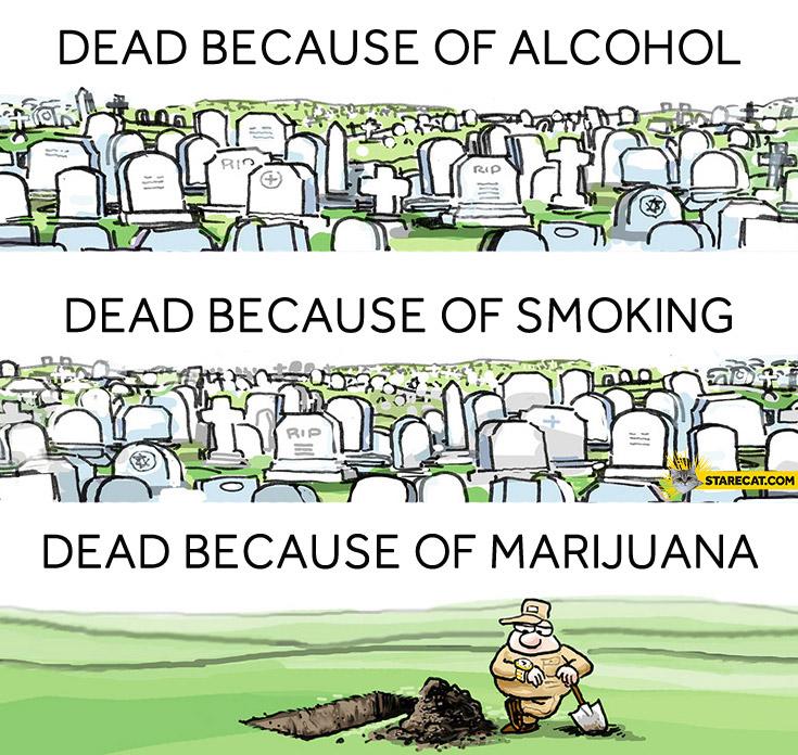 Dead because of marijuana