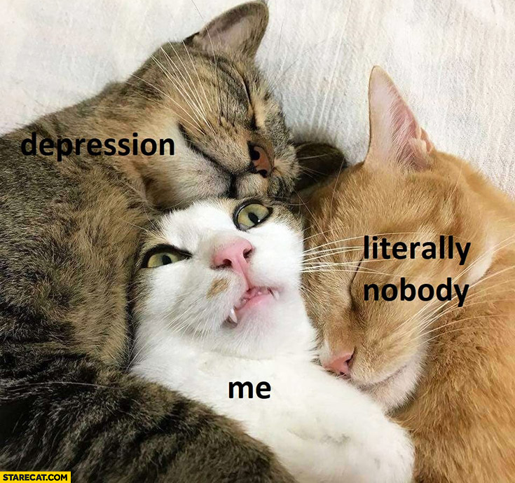 Depression me literally nobody cats hugging