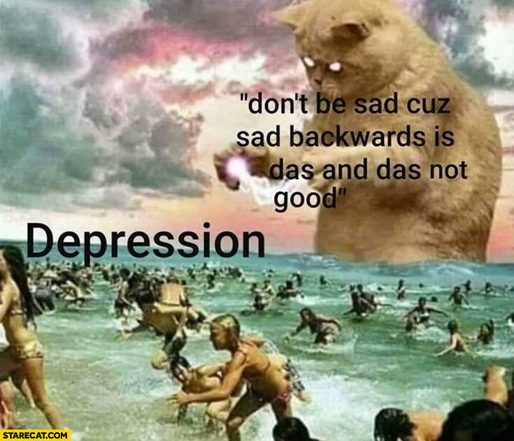 Depression vs cat don't be sad cause sad backward is das and das not good