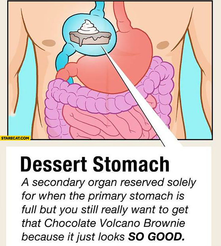 Dessert stomach: secondary organ reserved solely for when the primary stomach is full but you still really want to get that Chocolate Volcano Brownie because it just looks so good