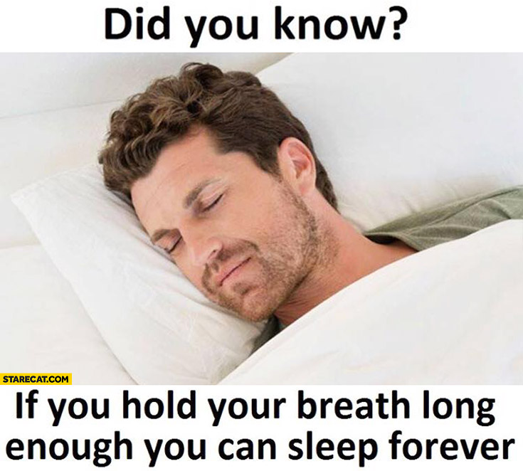 Did you know if you hold your breath long enough you can sleep forever?