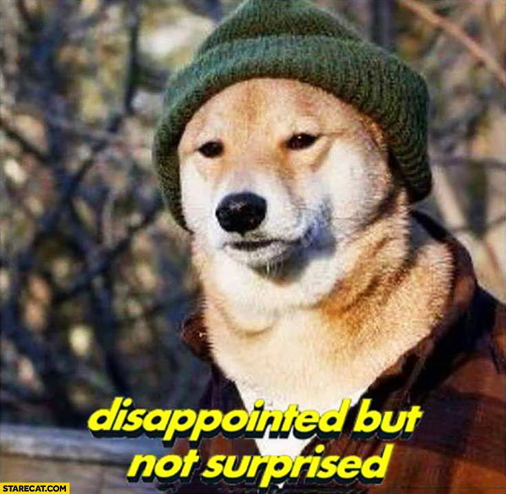 Disappointed but not suprised doge meme