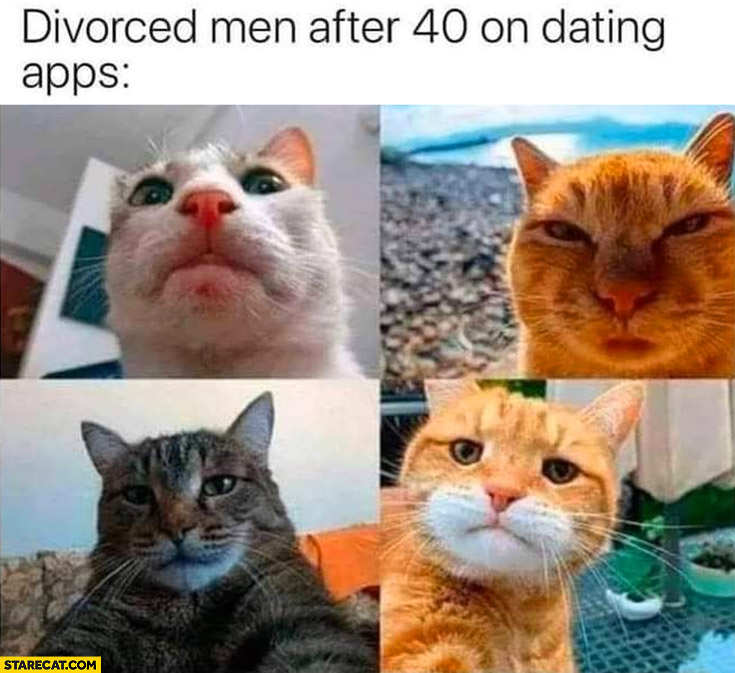 Divorced men after 40 on dating apps cat faces