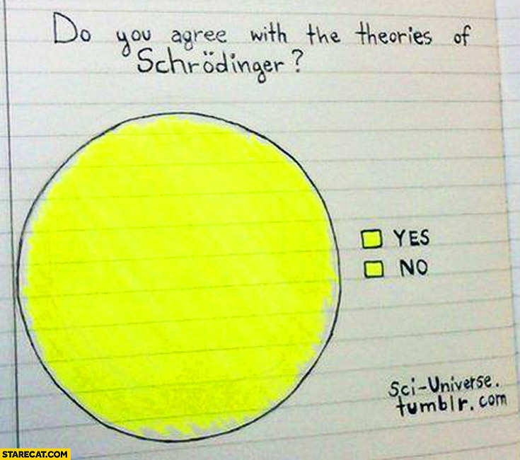 Do you agree with the teories of Schrodinger? Yes / no graph fail