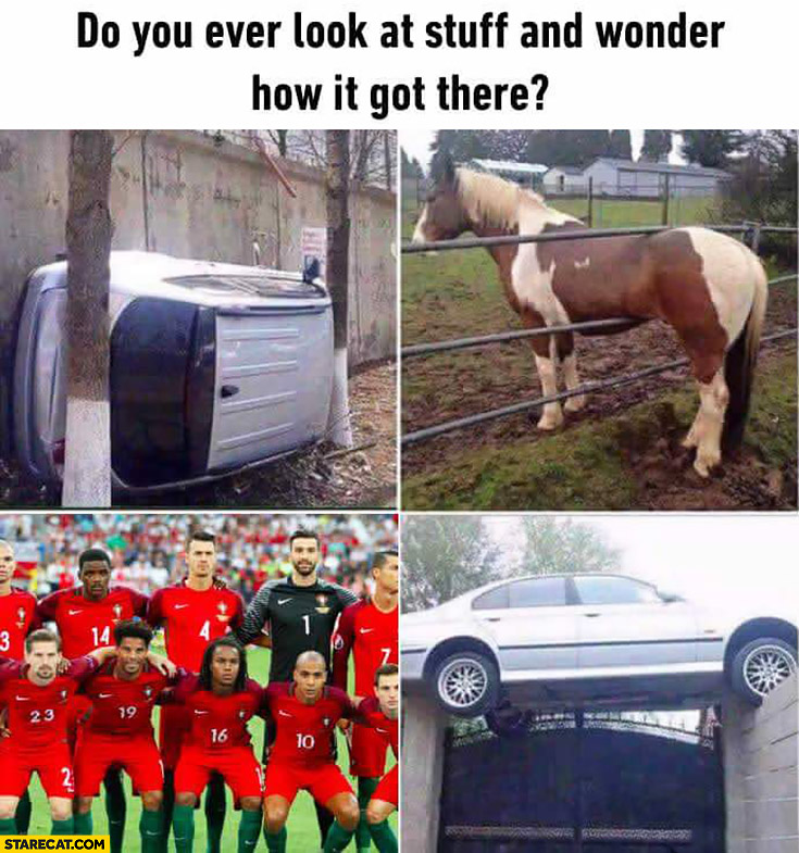 Do you ever look at stuff and wonder how it got there? Portugal national team Euro 2016