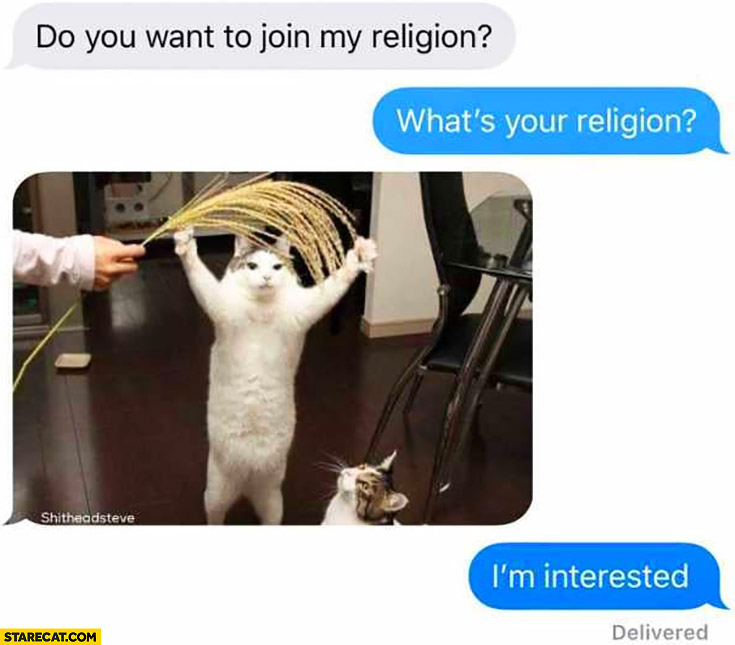 Do you want to join my religion? What's your religion? Cat worship, I'm interested