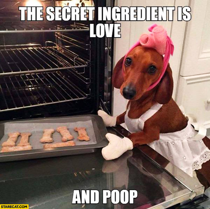 Dog baking cookies the secret ingridients is love and poop