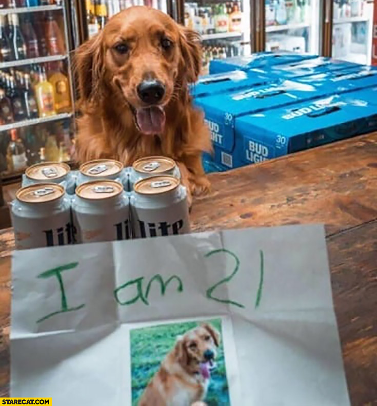 Dog buing beer card saying I am 21 years old