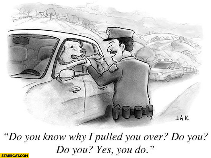 Dog driver policeman do you know why I pulled you over? Do you? Yes you do!