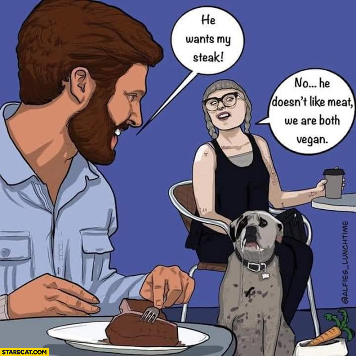 Dog he wants my steak no he doesn't like meat we are both vegan