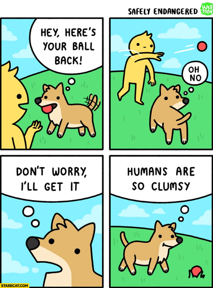 Dog hey here's your ball back, humans are co clumsy comic